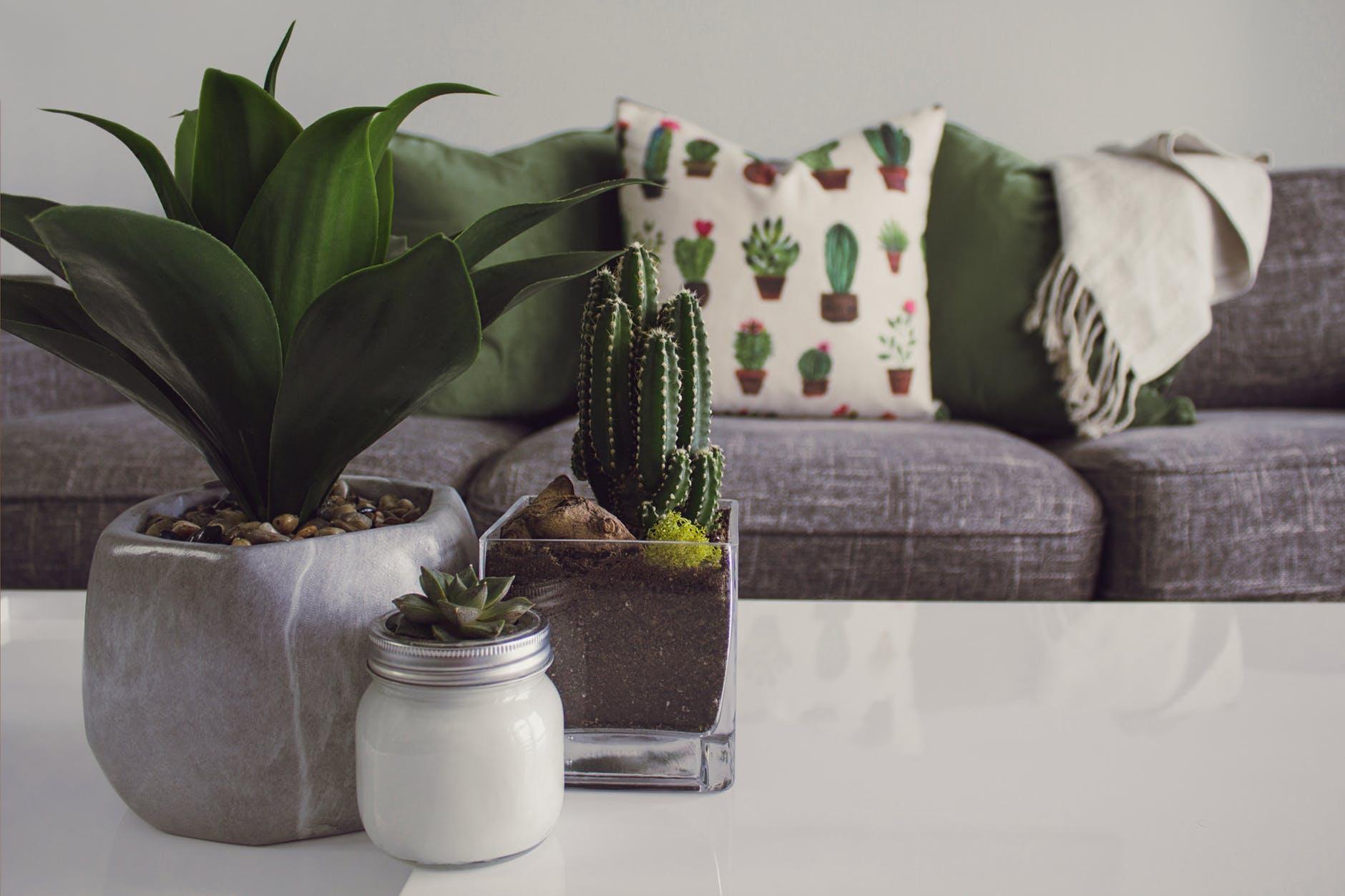 pexels photo 1005058 Top 10 Living Room Design